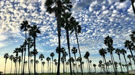 Pacific Beach, San Diego CA